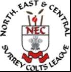 nec-surreycoltsleague-badge